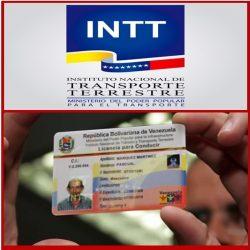 Licencia de conducir en Venezuela (Sistema del INTT)