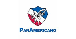 servicio panamericano-1