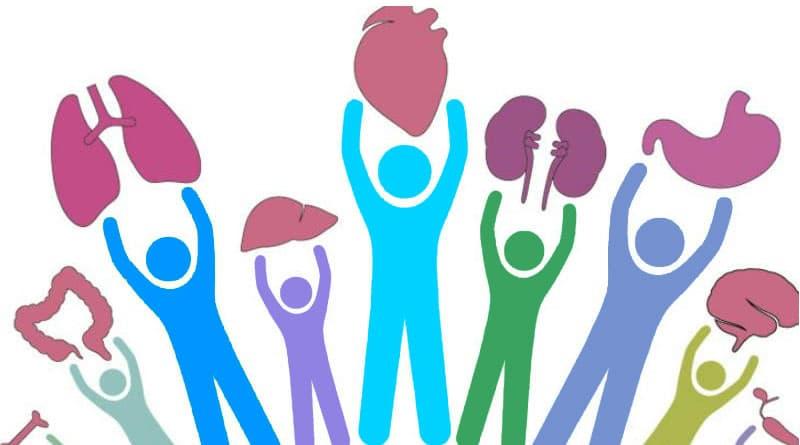 donar órganos en México
