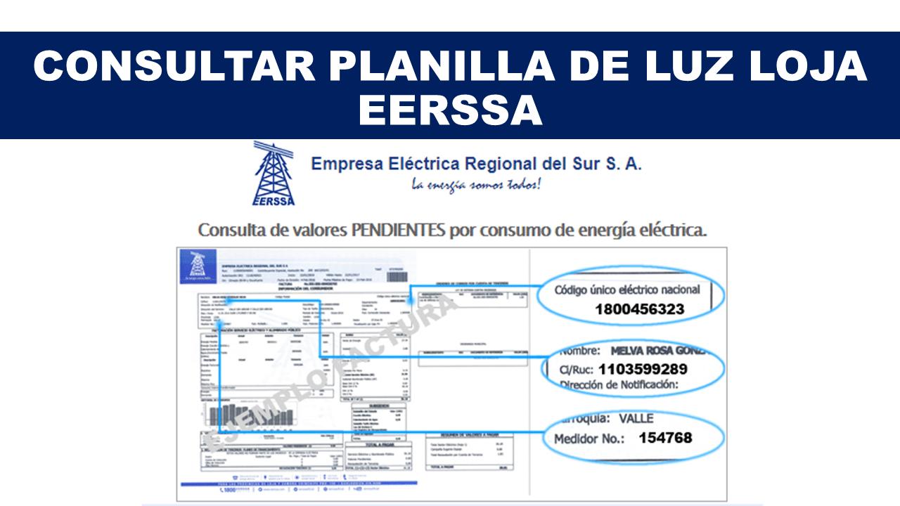 Empresa eléctrica regional del sur