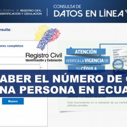 Conoce Cómo Consultar Un Número De Cédula En Ecuador